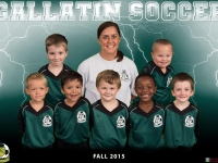 Fall 2015 Team Photos