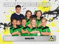 Spring 2014 Team Photos